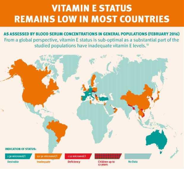 Vitamin E Status