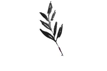 AlbumLeafLogo_Leaf_FlowerBookings