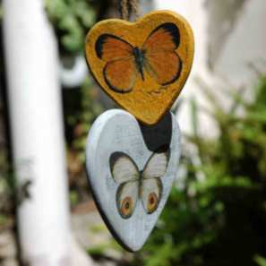 papallones-(1)