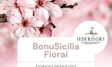 BonuSicilia Fiorai: contributo a fondo perduto per la categoria del commercio di piante e fiori