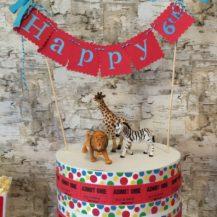 birthday_cake15