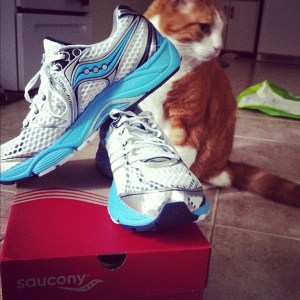 Saucony PowerGrid Triumph 10 Shoe Review