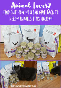 Giving Back To The Animals This Holiday Season