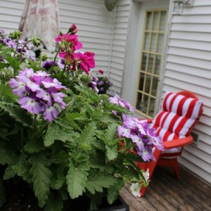Creating Your Own Personal Outdoor Oasis #MyPCGarden
