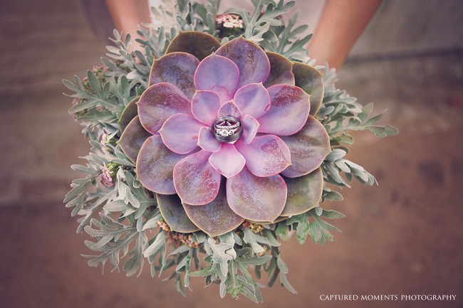 Succulent Wedding Theme Ideas Bouquets Decor Amp Favors