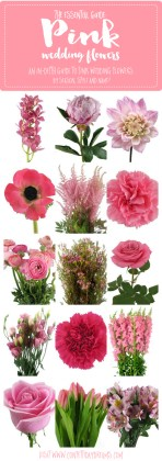 The Essential Pink Wedding Flowers Guide  Types of Pink Flowers     Types of Pink Wedding Flowers Names