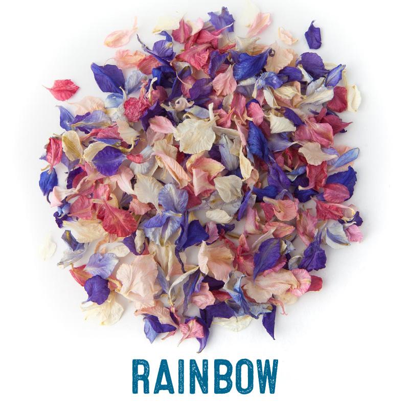 Rainbow mix delphinium confetti