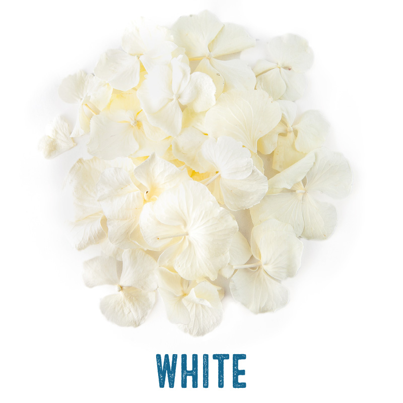 White Hydrangea Petal Confetti