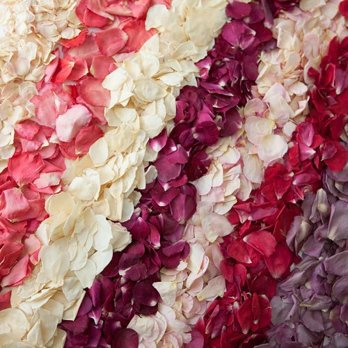 All Small Natural Rose Petal Confetti Products