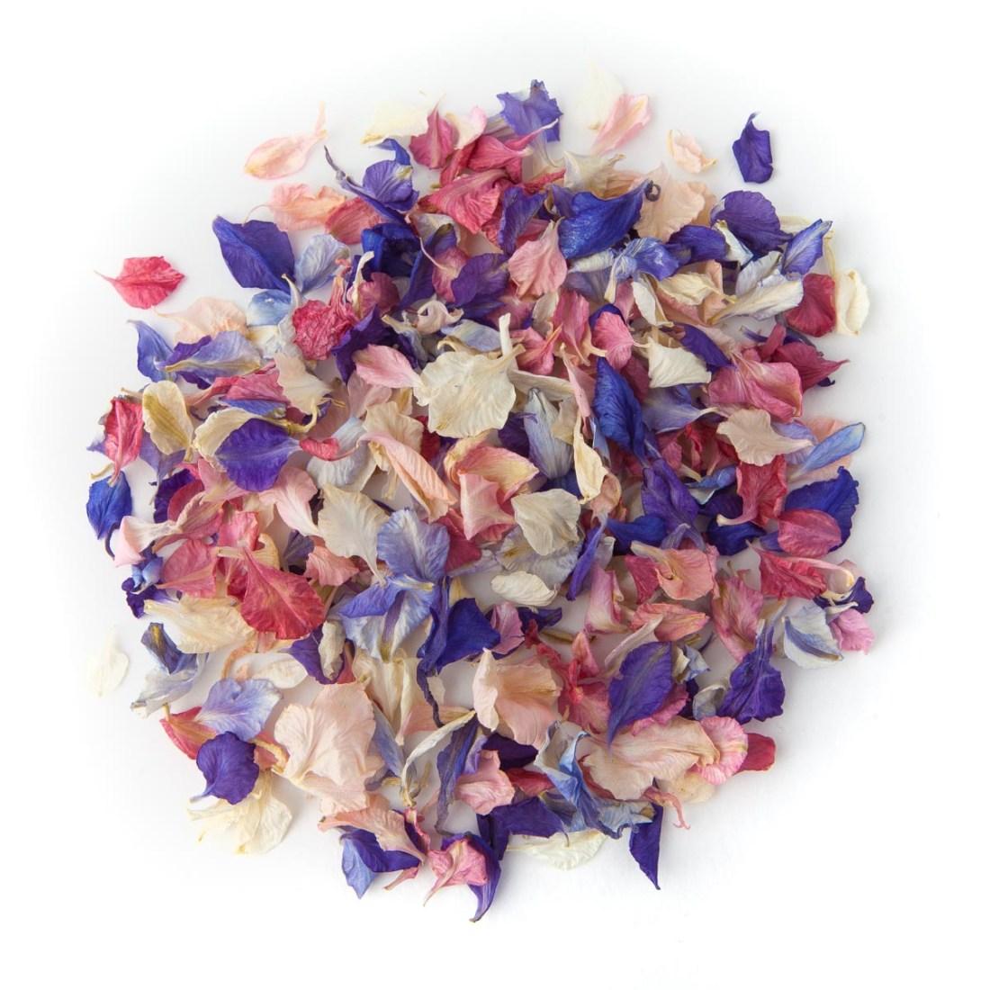Rainbow Delphinium Confetti