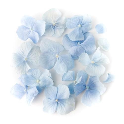Blue Hydrangea Petal Confetti