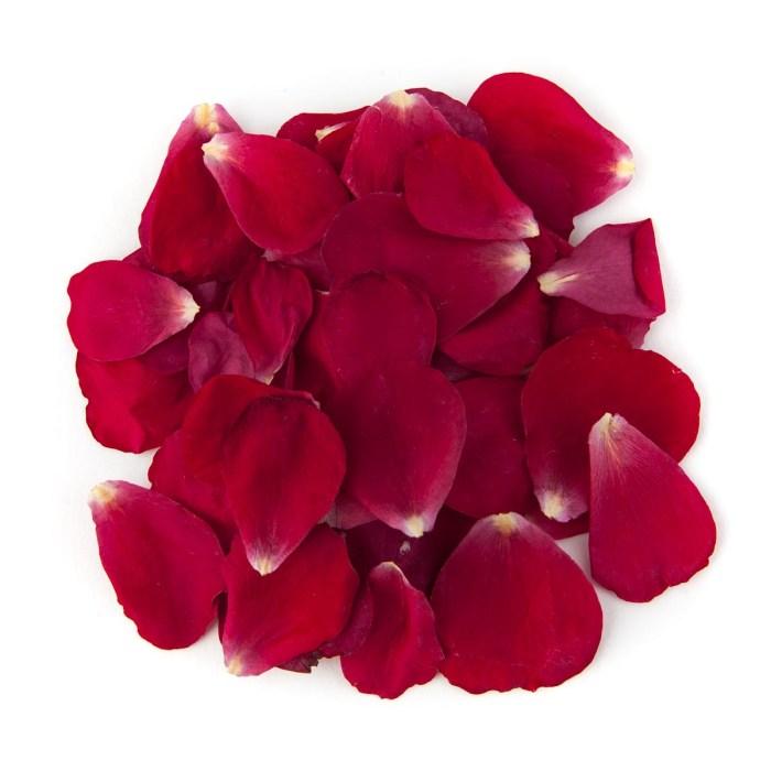 Bright Red Small Natural Rose Petal