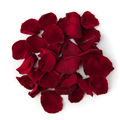 Burgundy Coloured Rose Petal