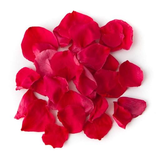 Dark Pink Coloured Rose Petal