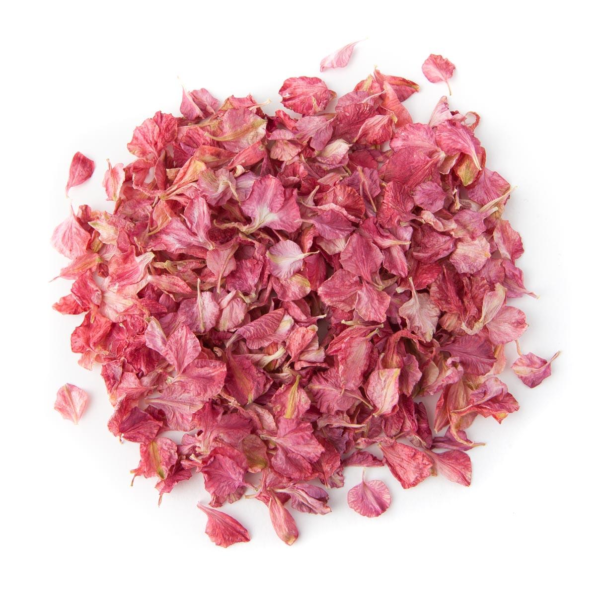 Raspberry Delphinium Confetti