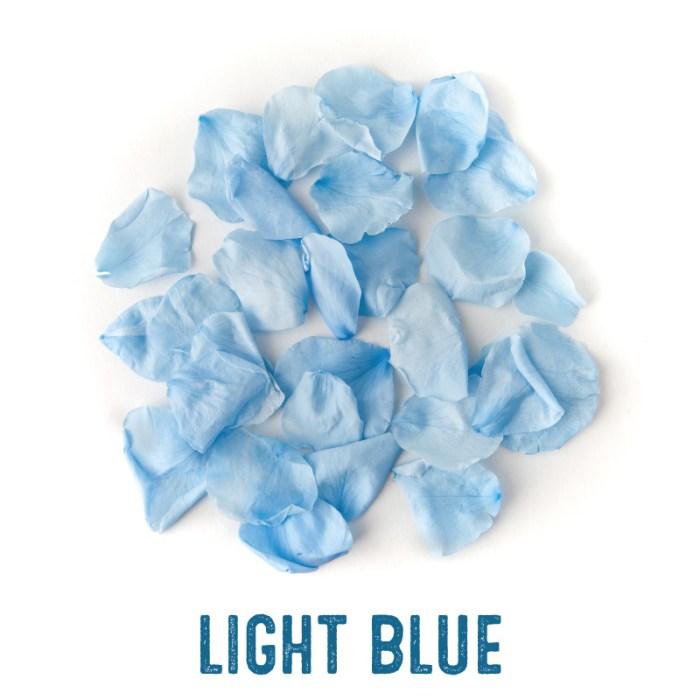 Light Blue coloured Rose Petal Confetti