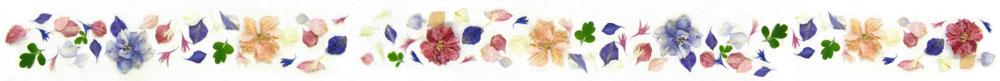 confetti petals flower petals banner