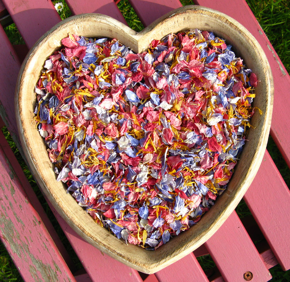 Biodegradable Confetti Petals - raspberry and Azure Blue Delphinums with Marigold Wildflowers