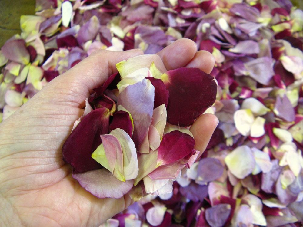 Rose Petals - a bespoke mix