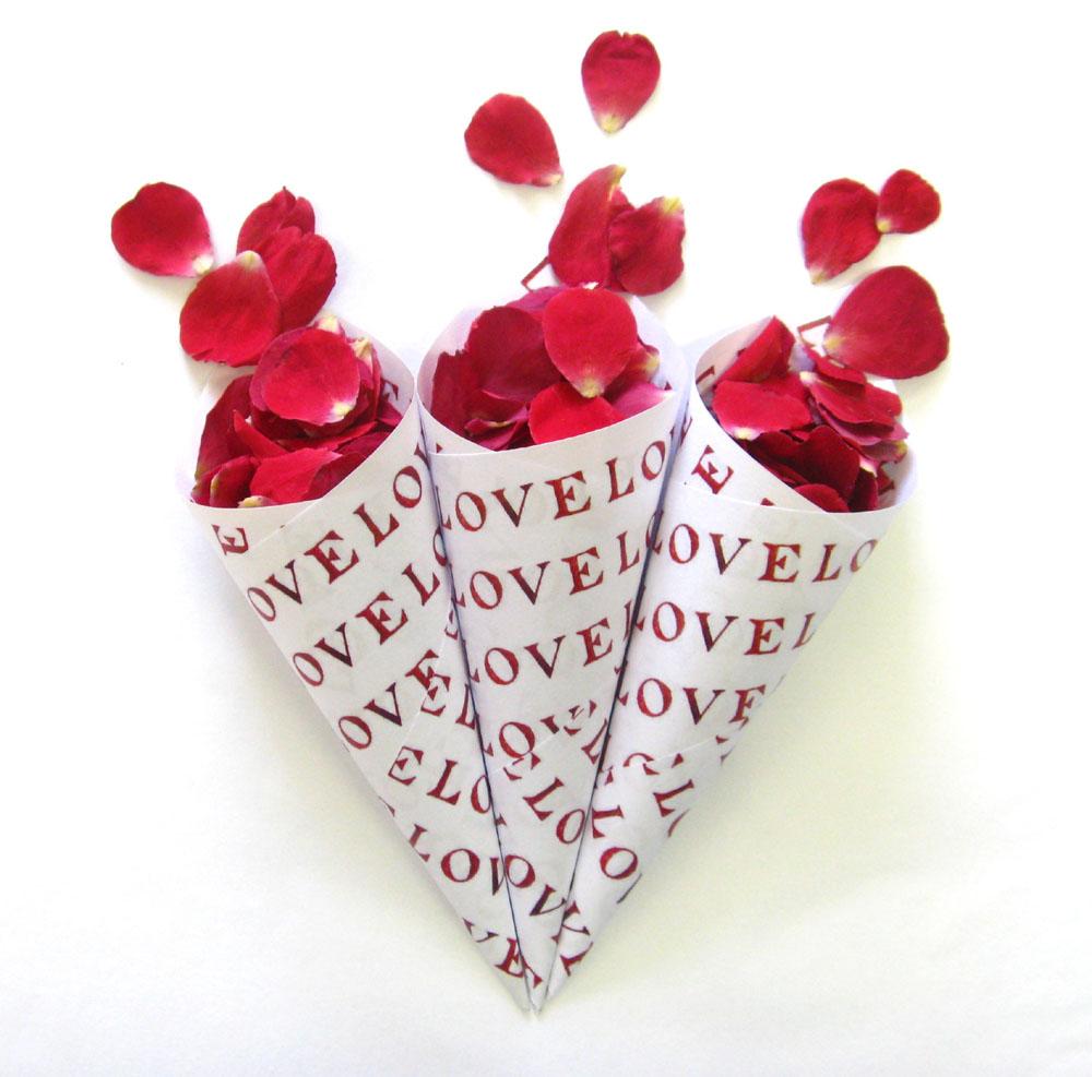 Rose Petals - Love Confetti Cones