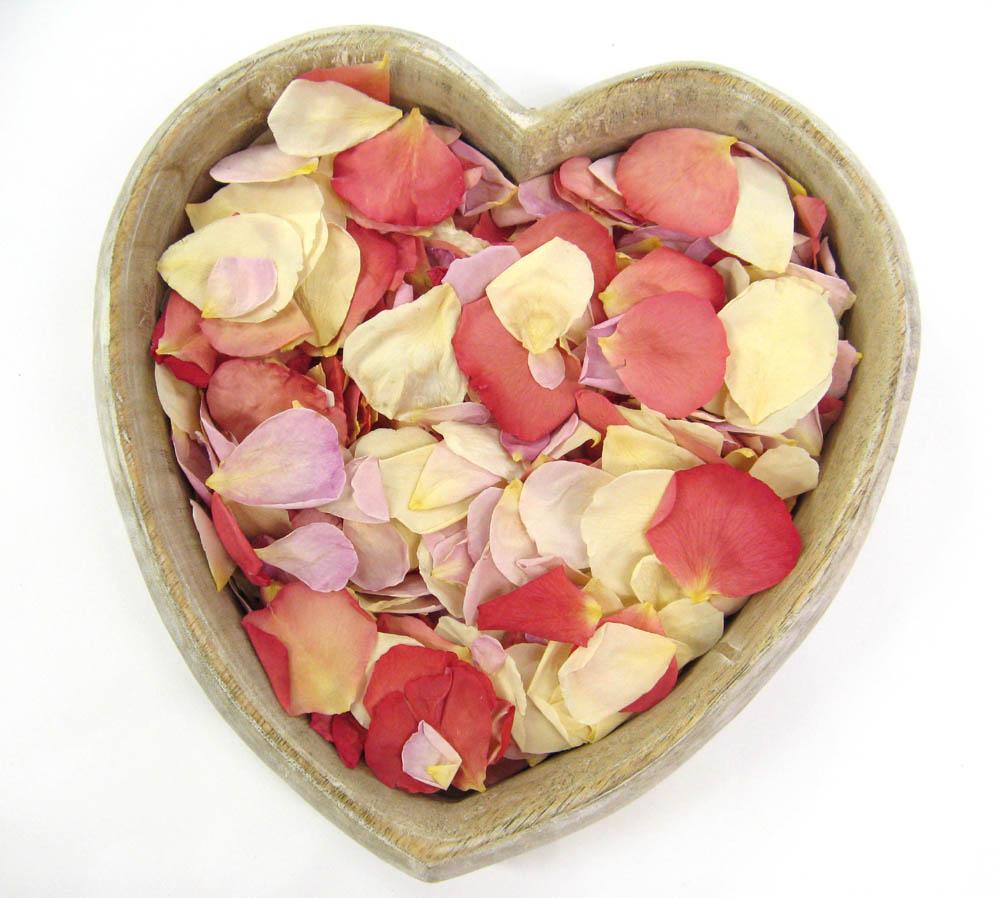 Rose Petals - pink wedding confetti