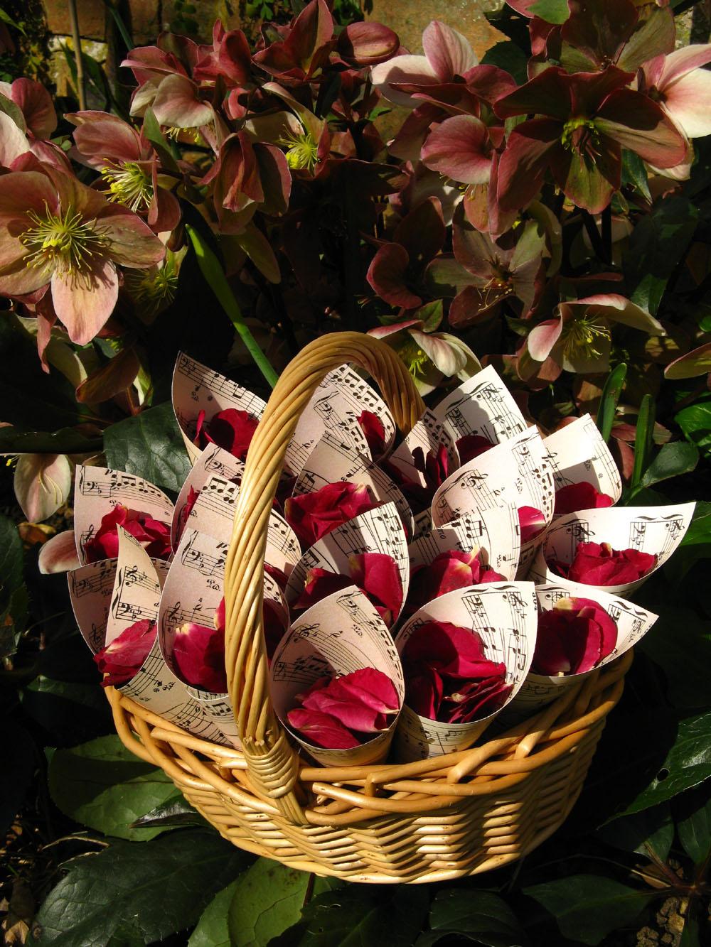 Flower Girl Baskets - merlot rose petals in music paper confetti cones