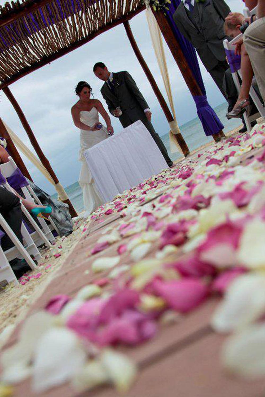 Flower petals - wedding aisles and petal pathways: Large Natural Rose Petal aisle
