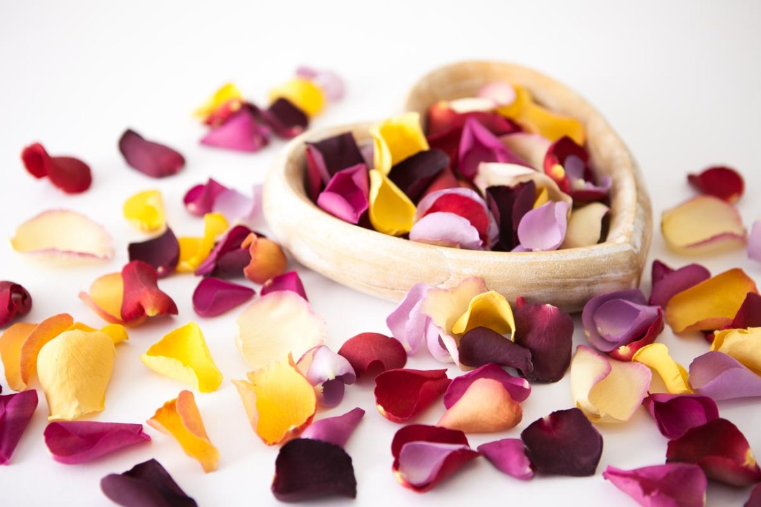 Petal Confetti - Large Natural Rose Petal heart