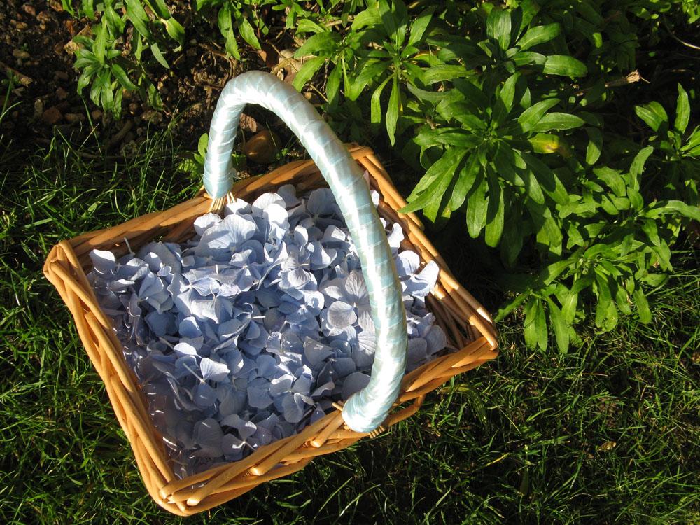 Petal Confetti - Dusky Blue Hydrangea Petals