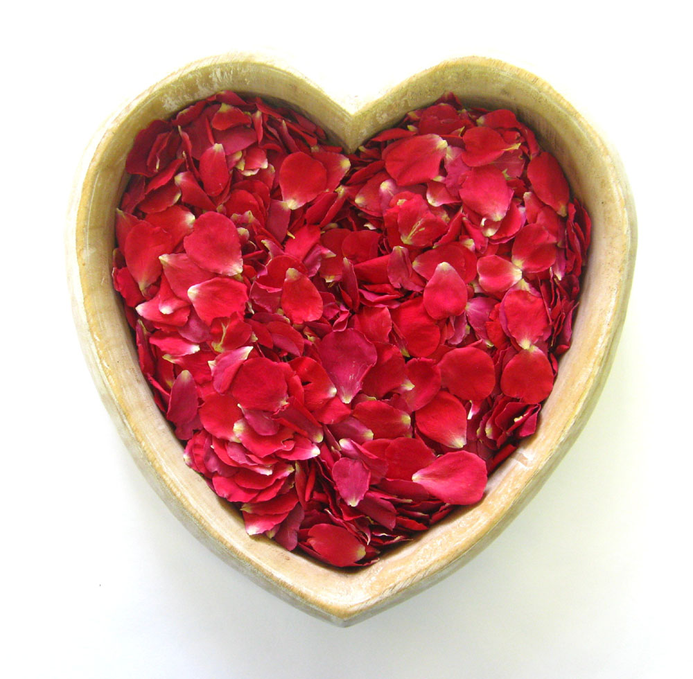Petal Confetti - Red Small Natural Rose Petals