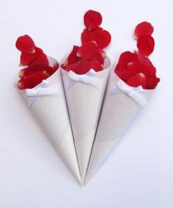 Red Rose Petals - Confetti Cones
