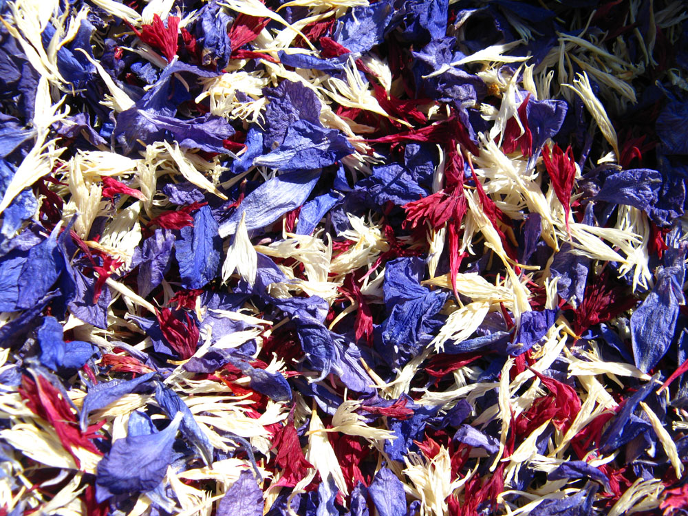 Petal Confetti - Delphiniums, Wildflowers and Lavender - Purple, Bluebell and Claret confetti petals