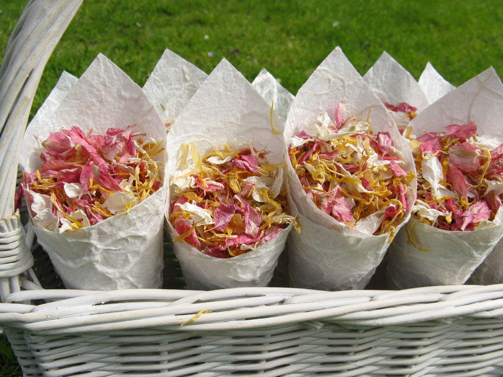 Petal Confetti - Delphiniums, Wildflowers and Lavender - Confetti Cones