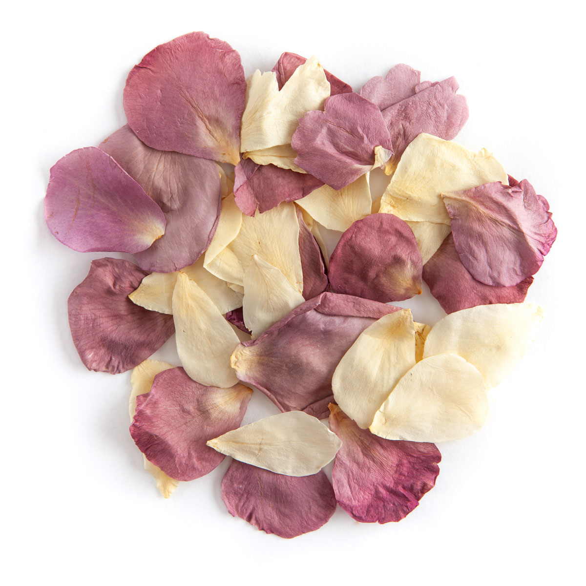 Lilac & Cream rose petals - Biodegradable Rose Petal Confetti - Real Flower Petal Confetti