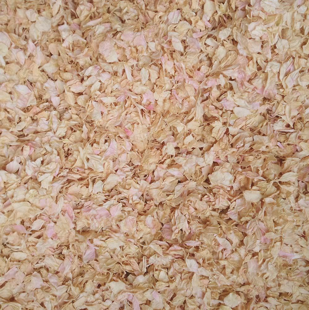 Pink Sunset Delphinium Confetti Petals