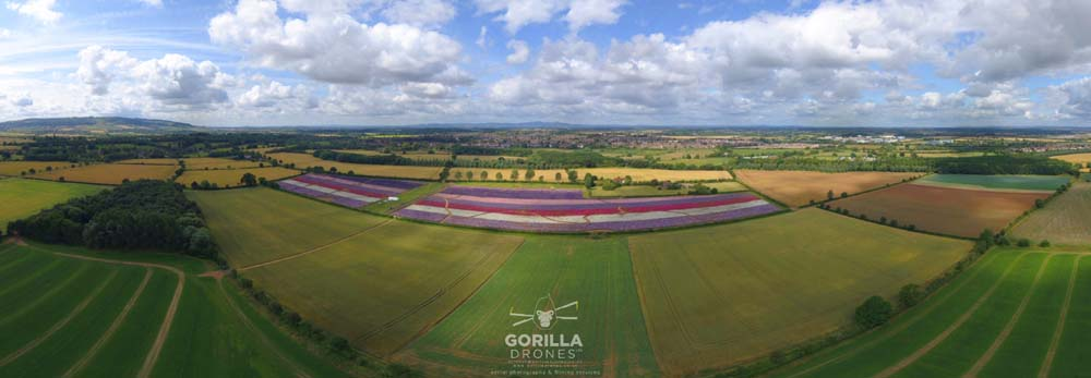 The Confetti Flower Field from the air, with Bredon Hill, Pershore and the Malvern Hills in the background