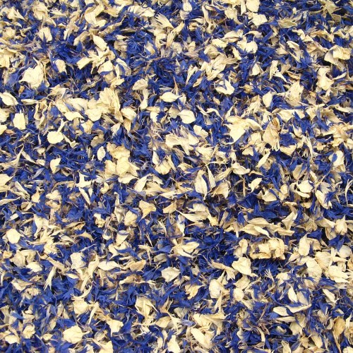 Winter Wonderland Confetti Petals