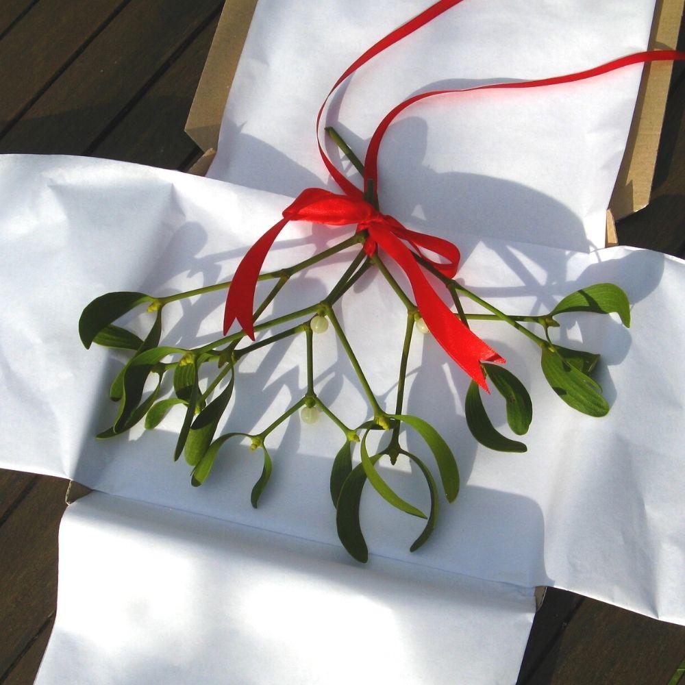 mistletoe kisses by post