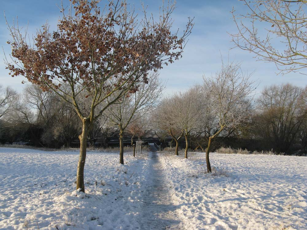 wyke manor estate - bridge meadow in the snow