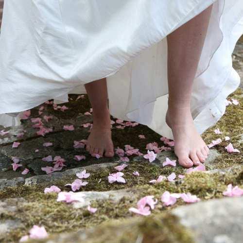 Bespoke Hydrangea Petals