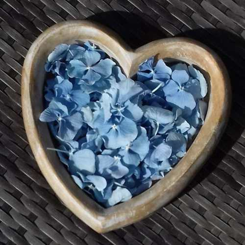blue baby shower petals