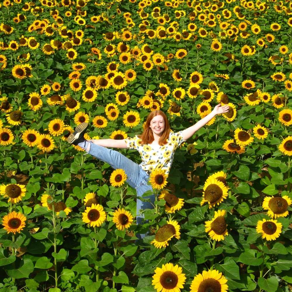 Penny in the sunflowers, 2021, The Sunflower Field, The Real Flower Petal Confetti Company, Worcestershire