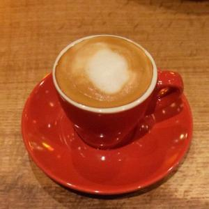 Vittoria coffee jackrabbit