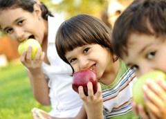 Demanda de alimentos crecerá a pesar de fenómenos climáticos OCDE-FAO