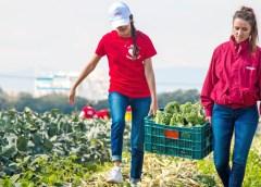 Kellogg's celebra el Día Mundial de la Alimentación a través de distintas iniciativas para acercar una mejor nutrición a los mexicanos