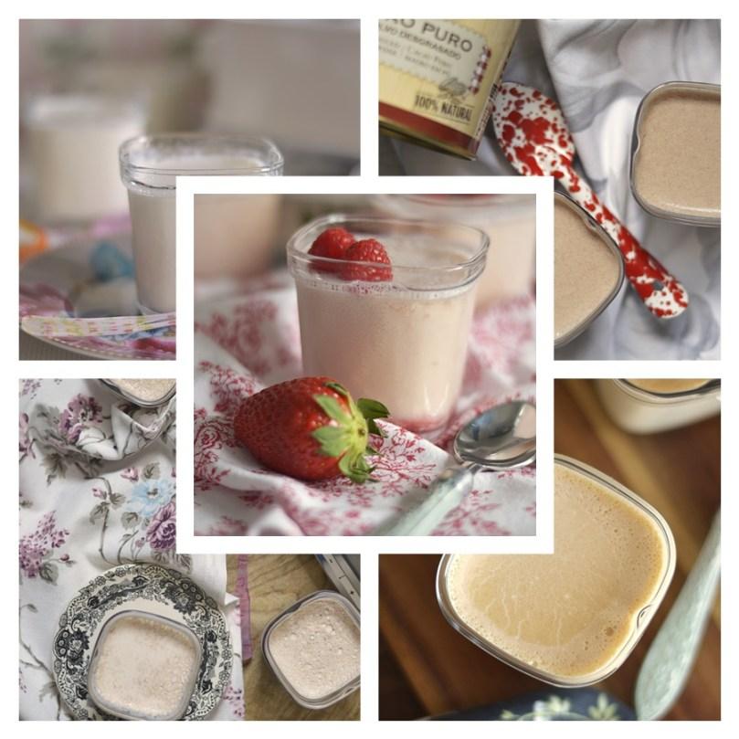 5 recetas de yogures para hacer en casa | CON HARINA EN MIS ZAPATOS