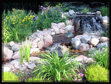 Serenity falls brook.