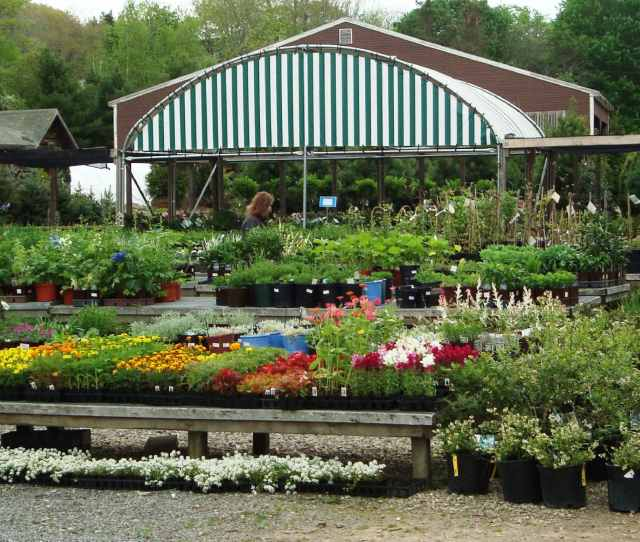 A Portion Of Conleys Nursery And Landscape Display Yard