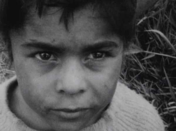 ÉRASE UNA VEZ BRASIL: LOS HIJOS (BRASILEÑOS) DE SOLANAS