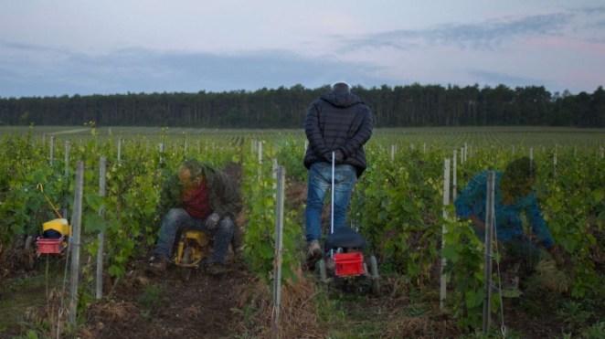 Paris Photo : la maison de champagne Ruinart révèle l'œuvre lauréate de son prix 2021